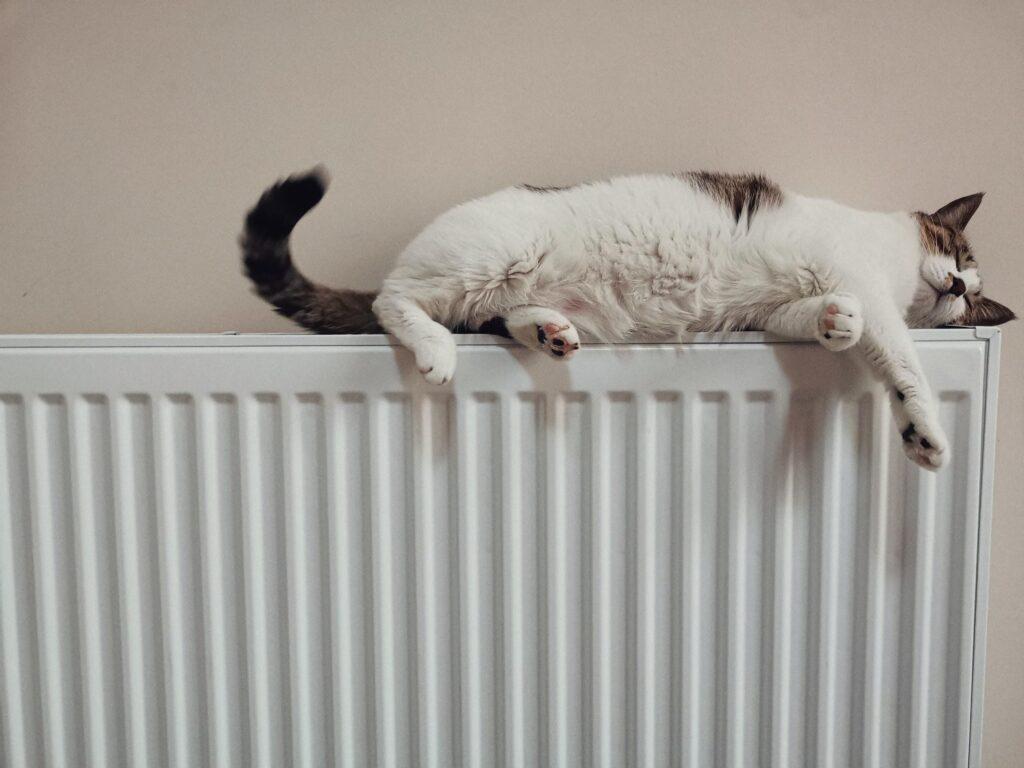 boiler-energy-efficiency-guide-01
